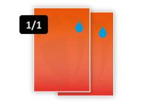 1 PMS Kleur voor/1 PMS Kleur achter (1/1)